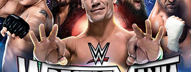WWE Translite