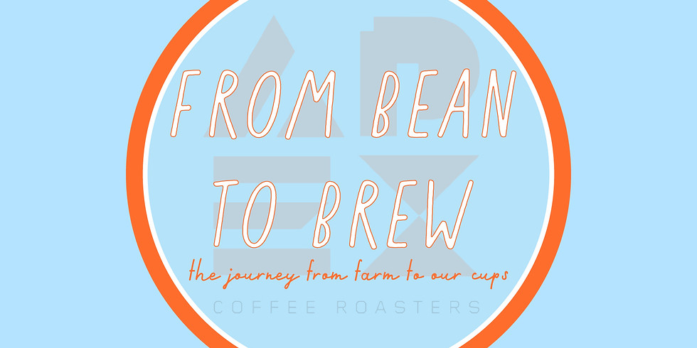 From Bean to Brew by Apex Coffee Roasters