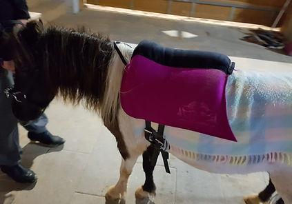 Personalisiert und maßgeschneiderte Ponysättel aus Filz - Comfortvariante