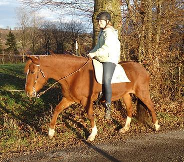 Riding on a Felt Saddle