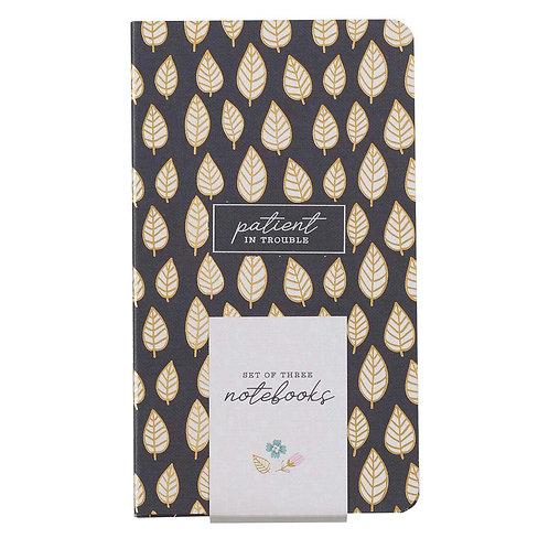 Joyful Patient Persistent Notebooks