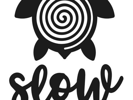 O que é o 'Movimento SLOW' e como nasceu a Slow PT.