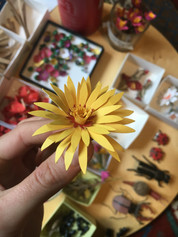 Flowering detail.