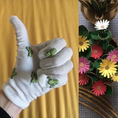 Cacti Gloves with Livingstone Daisy