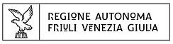 FVG logo.png