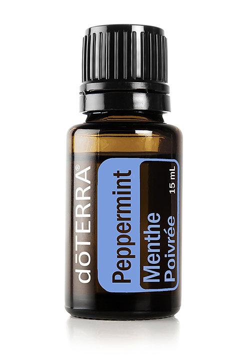 Menthe poivrée (PSN)  Mentha piperita