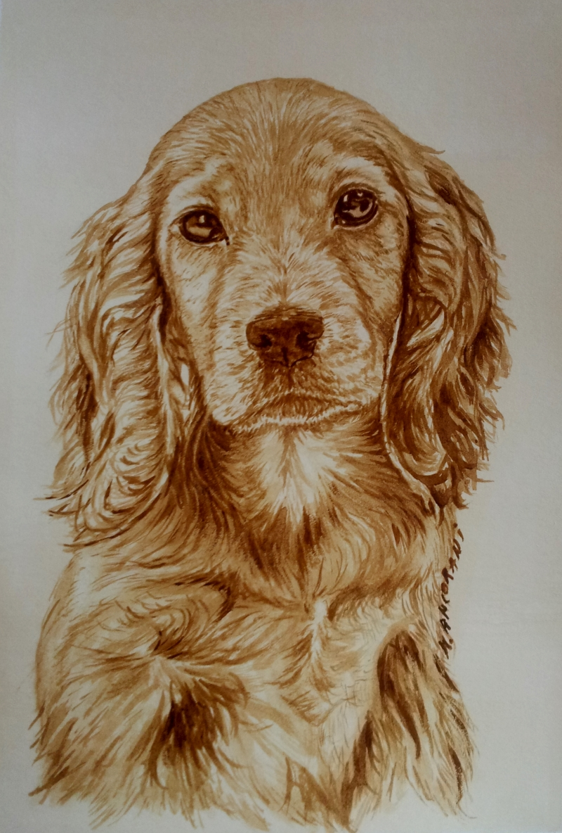 Cocker Coffee Painting