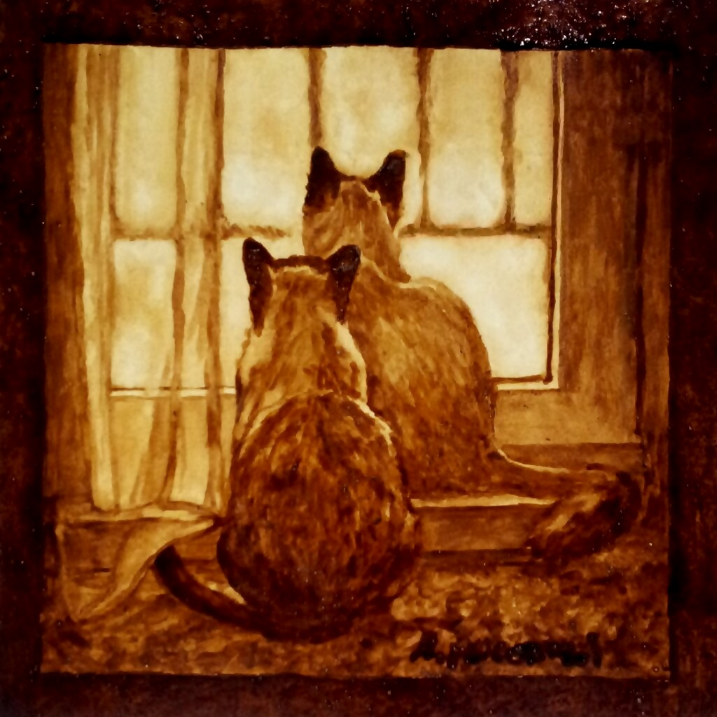 Coppia di gatti - ritratto al caffè