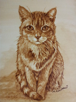 Charlie - Ritratto Gatto Coffee Painting
