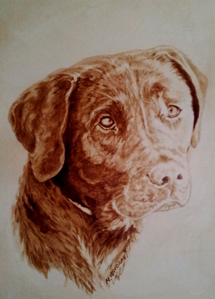 Labrador Portrait Coffee Painting