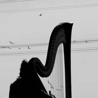 harp and soul - music