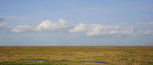 windmillsHorizon.png