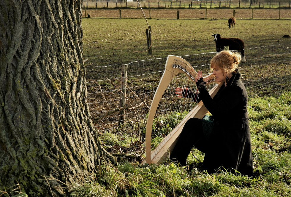 NEDERLAND © (harp and soul production house)