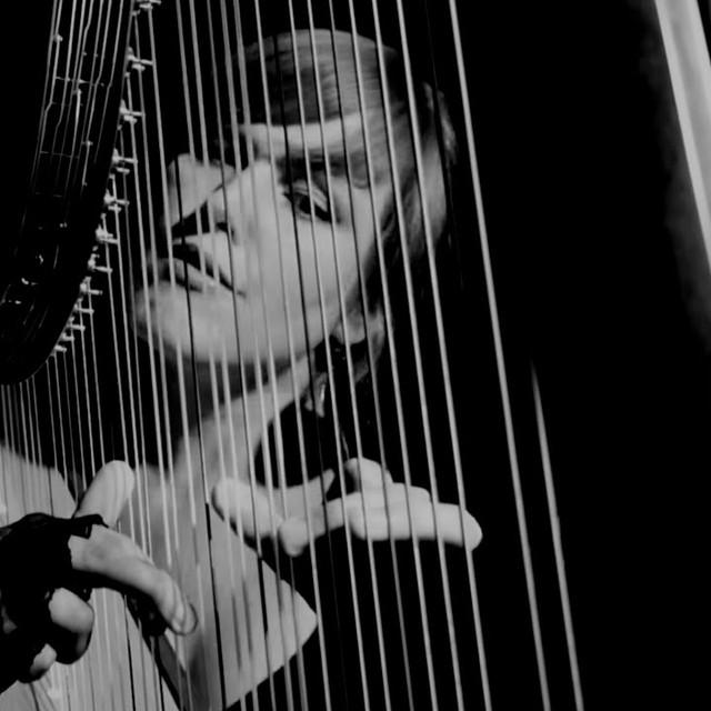 harp / hammond