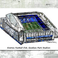 EFC stadium - tina leahey designs