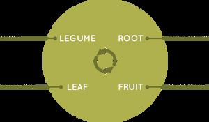 legume, root, leaf, fruit annual crop rotation