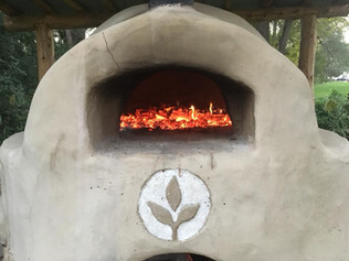 City Sprouts in the News: Pizza, Kolaches, Tacos, and More!