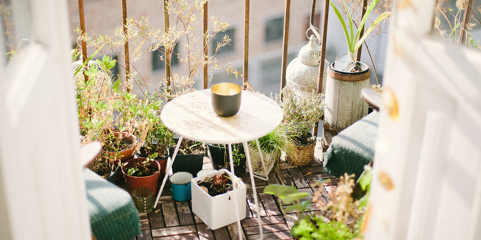 Small Space Gardening (1)