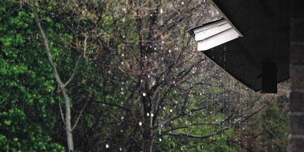 Rainwater Harvesting 101