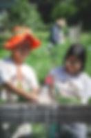 20190712_Harvest-6.jpg