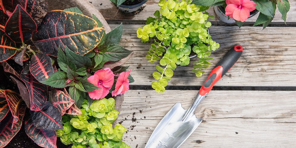 DIY Planter Design