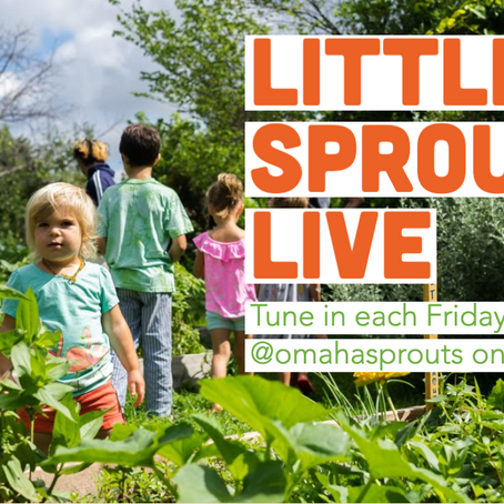 Little Sprouts Live