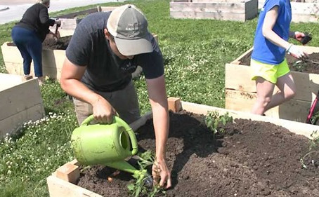 City Sprouts in the News: Community garden aims to grow a more healthy Omaha