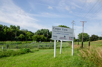 Cooper Farm