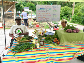 City Sprouts in the News: City Sprouts to run morning farm stand