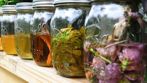 Tinctures & Syrups