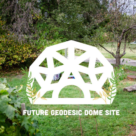 Greenhouse Coming Soon!