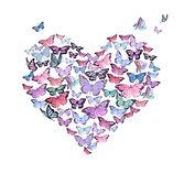HEATR butterflies.jpg