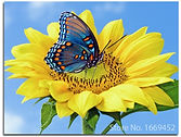 Diamond-Painting-Flower-Sunflowers-and-butterflie-diamond-mosaic-cross-stitch-Icon-cloth-n