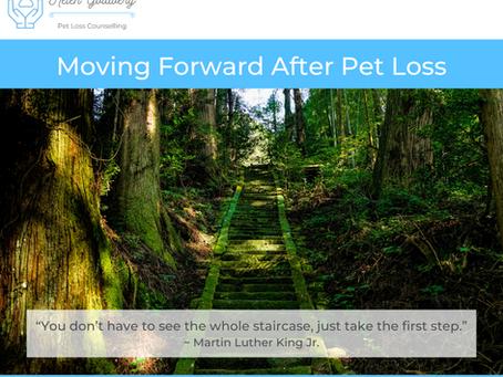 Moving Forward After Pet Loss