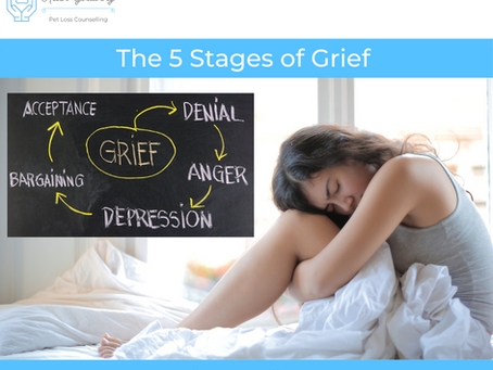 The 5 Stages of Grief