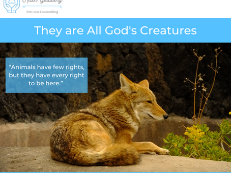They are all Gods Creatures