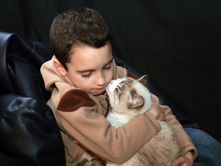 Series: Children and Pet Loss, Part 1
