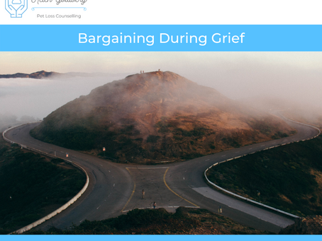 Bargaining During Grief