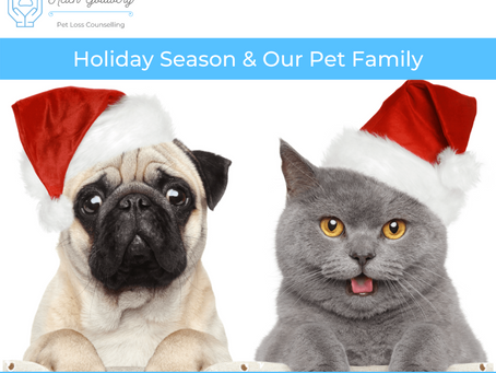Holiday Season & Our Pet Family Members