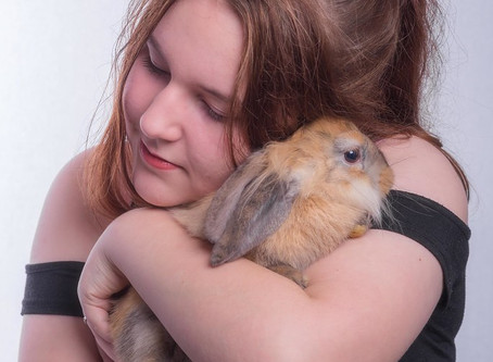 Children and Pet Loss:  Ages 12- 17 years