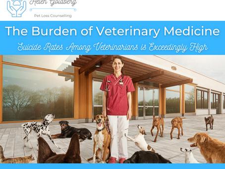 The Burden of Veterinary Medicine ~ Suicide Rates Among Veterinarians is Exceedingly High