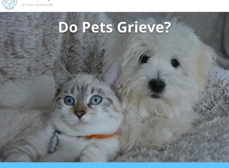 Do Pets Grieve?