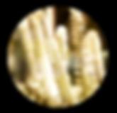 Circle Inserts_Twisty Potato.png