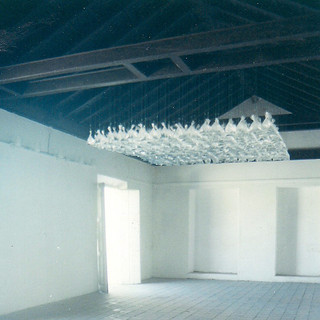 Transparency, 2001