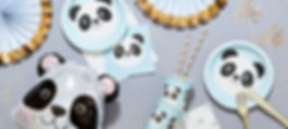 Miko-The-Panda-Baby-ShowerHeader.jpg