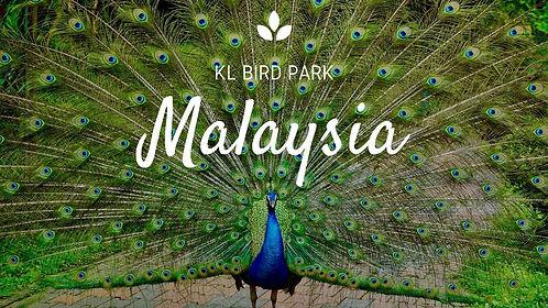 kl bird park.jpg