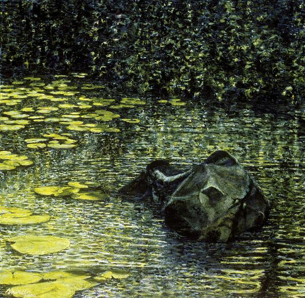 Buffalo Water - 1