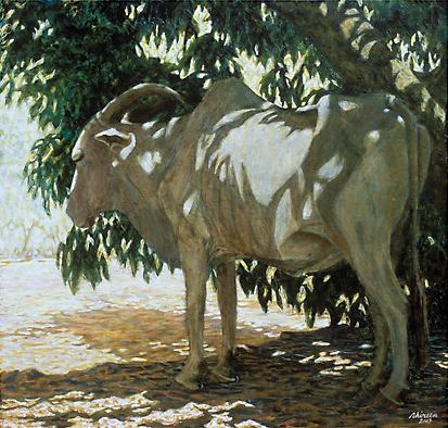 Waiting Bull