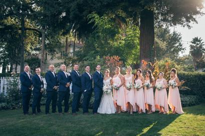 wedding party redux.jpg