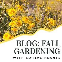 Fall Gardening Blog.jpg